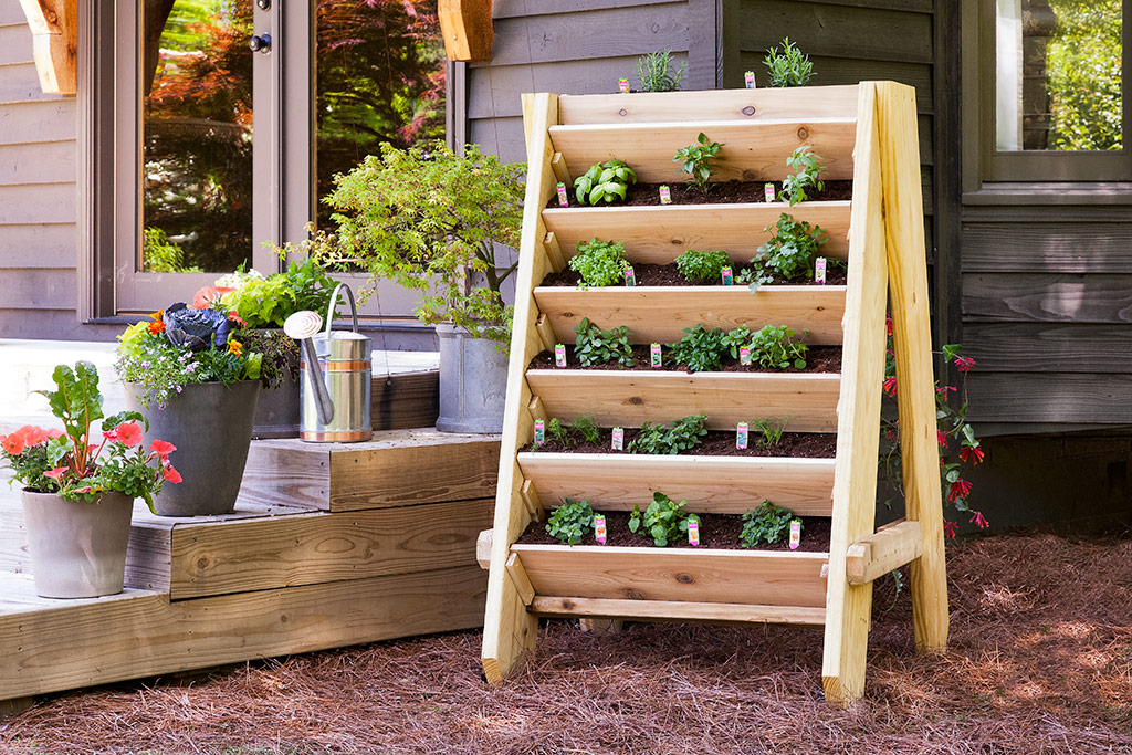 So You Want To Create Your Own Vertical Herb Garden / Herb